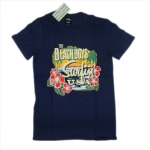 BEACH BOYS 官方进口原版 Surfin USA (TS-S)