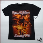 CHILDREN OF BODOM - Something Wild (TS-XL) TTH1604